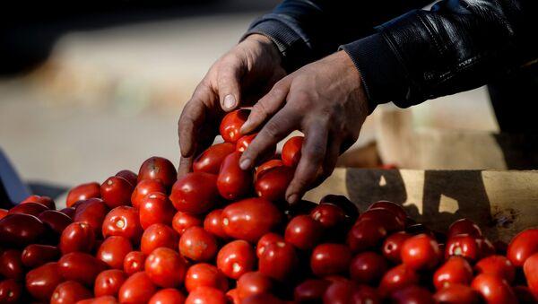 Rajčata na trhu - Sputnik Česká republika