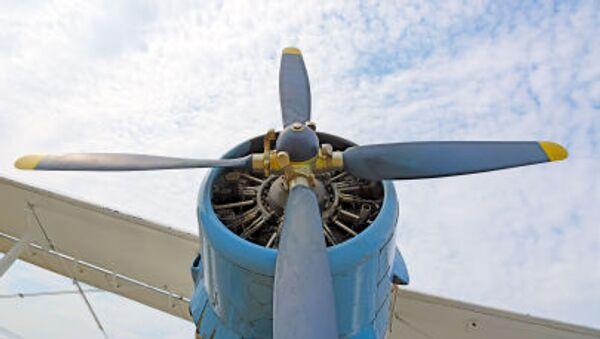 Lehké víceúčelové letadlo An-2 - Sputnik Česká republika