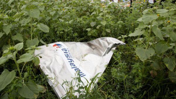Úlomky MH17 - Sputnik Česká republika