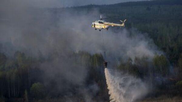 Nedaleko Černobylu hoří 130 hektarů lesa - Sputnik Česká republika