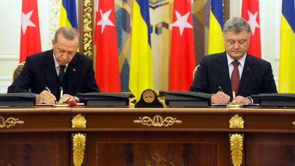 Schůzka tureckého prezidenta Tayyipa Erdogana a ukrajinského předáka Petra Porošenka - Sputnik Česká republika