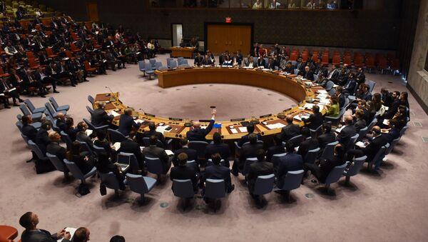 Zasedání RB OSN - Sputnik Česká republika