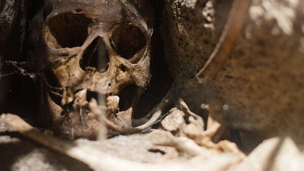 Starobylá lebka (ilustrační foto) - Sputnik Česká republika