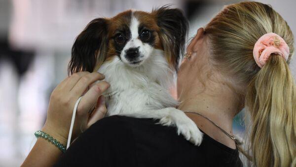 Dívka s psem - Sputnik Česká republika