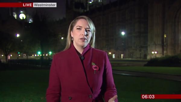 Vysílání BBC bylo přerušeno ženským sténáním - Sputnik Česká republika