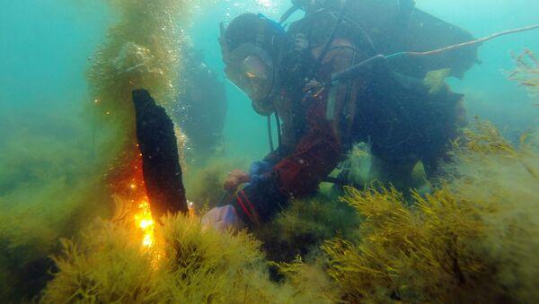 Potápěč v Černém moři - Sputnik Česká republika