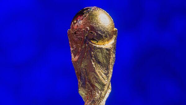 Pohár mistrovství světa ve fotbale FIFA - Sputnik Česká republika