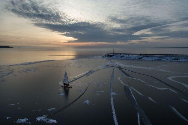 Závody v jachtingu (plachetnicové závody) na Obském moři, Novosibirsk - Sputnik Česká republika