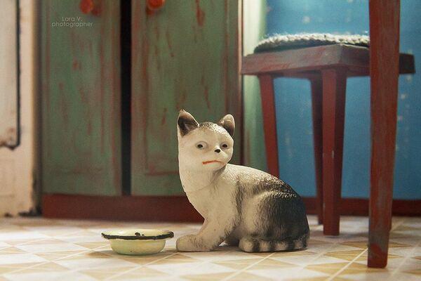Toto kotě se již stalo memem. - Sputnik Česká republika