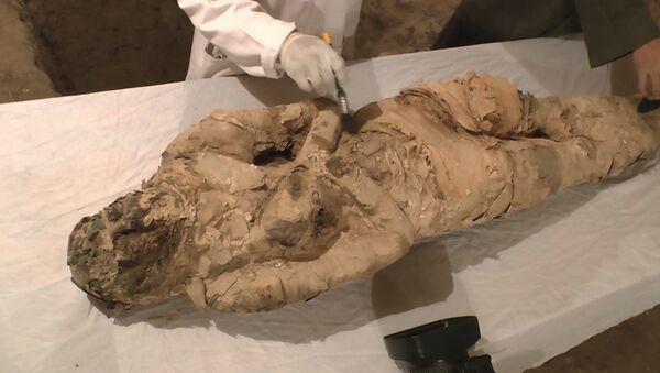 Archeologové objevili v Luxoru dvě hrobky z dob starověkého Egypta - Sputnik Česká republika