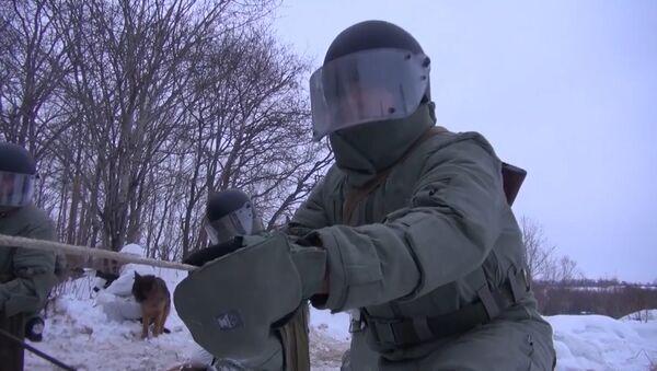 Nejen hrubá síla: ruská ženijní vojska slaví své narozeniny - Sputnik Česká republika