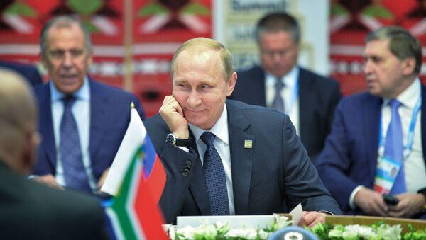 Členské země BRICS plánují setkat se na summitu G20 v Turecku v polovině listopadu, prohlásil prezident RF Vladimir Putin. - Sputnik Česká republika