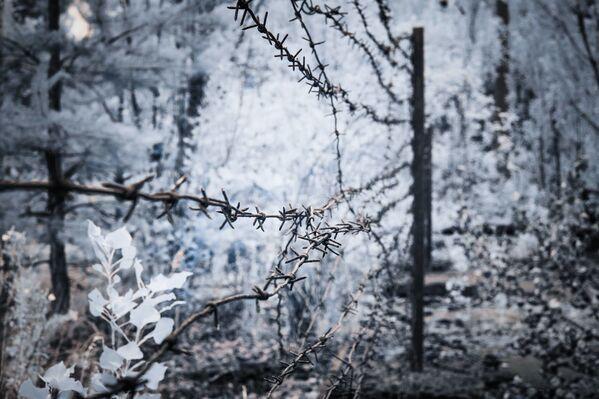 Fotografie Černobylu, které nahání hrůzu - Sputnik Česká republika