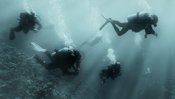 Potápěči. Ilustrační foto - Sputnik Česká republika