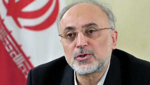 Šéf Íránské organizace pro jadernou energii Alí Akbar Sálehí - Sputnik Česká republika