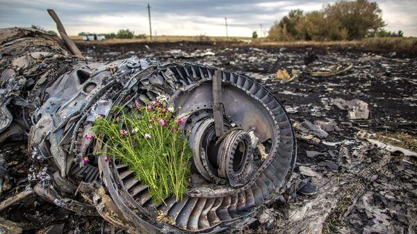 Trosky Boeingu 777, který se zřítil na Donbasu - Sputnik Česká republika