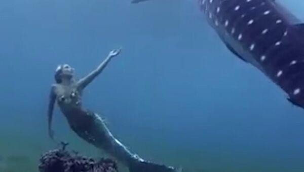To je co, opravdová mořská panna? - Sputnik Česká republika