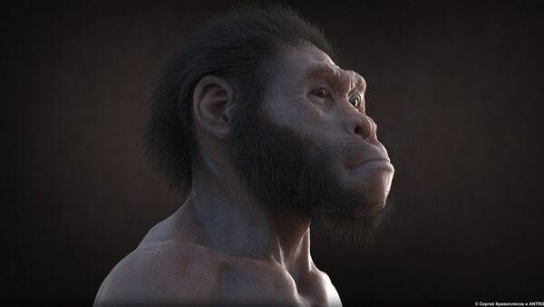 Zemřel ve staré jeskyni, ožil v Moskvě ve XXI. století: Zázračný osud Homo naledi - Sputnik Česká republika