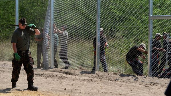 Maďarští vojáci staví plot na hranici se Srbskem - Sputnik Česká republika
