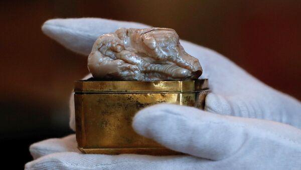 Unikátní perla vážící 118 gramů a měřicí 7 centimetrů - Sputnik Česká republika