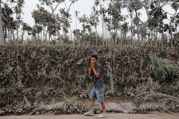 Muž jde oblastí pokryté popelem po erupci sopky Fuego v Guatemale - Sputnik Česká republika
