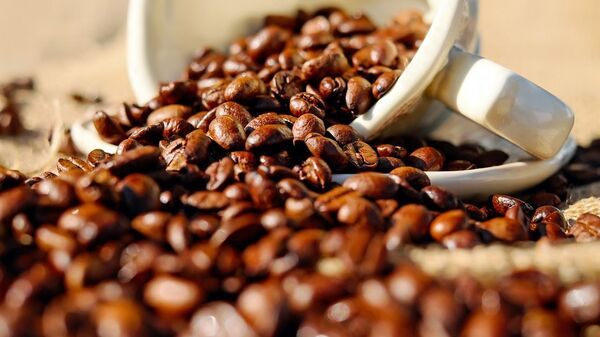 Kávová zrna - Sputnik Česká republika