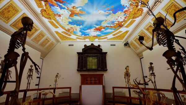 Národní muzeum dějin vědy a lékařství Hermana Boerhaave - Sputnik Česká republika