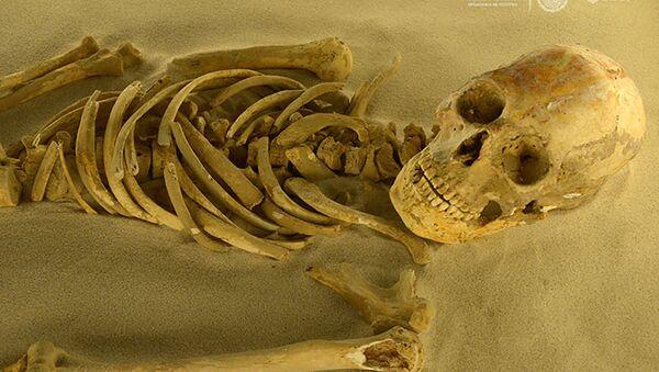 Kostra z doby Mayů, která byla nalezena během vykopávek v Mexiku - Sputnik Česká republika