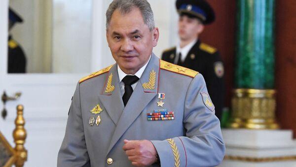 ministr obrany Sergej Šojgu - Sputnik Česká republika