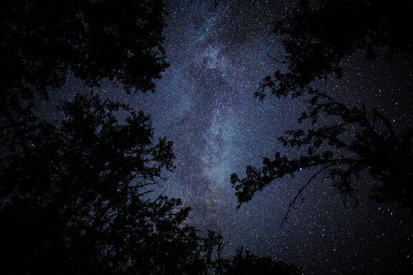 Planoucí krása meteorického roje Perseid - Sputnik Česká republika
