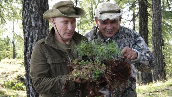 Ruský prezident Vladimir Putin a ministr obrany Sergej Šojgu - Sputnik Česká republika