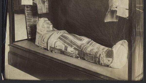 Starověká egyptská mumie v Stanfordském muzeu - Sputnik Česká republika