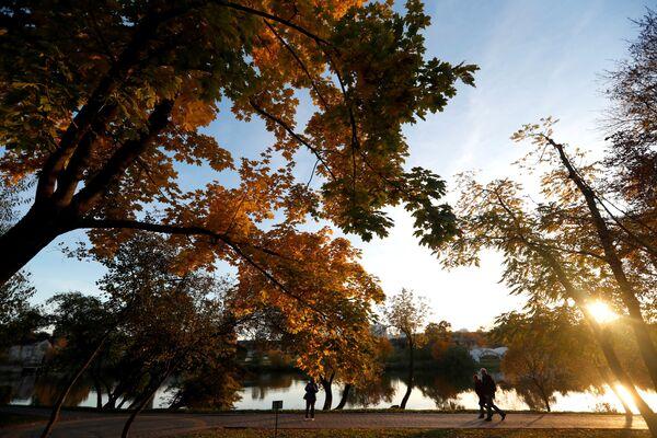 Liliová, zlatá, fialová: 50 odstínů podzimu v různých zemích - Sputnik Česká republika