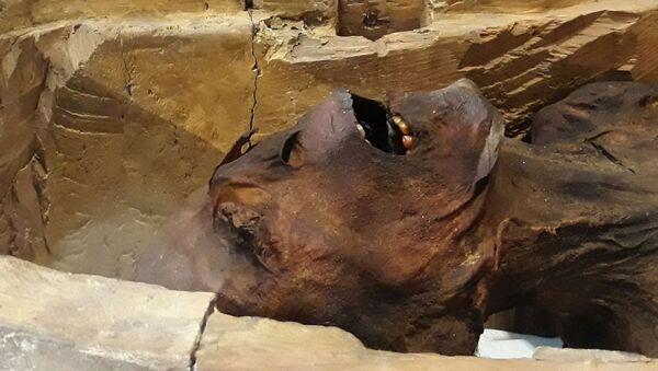 Mumie v Egyptu. Ilustrační foto - Sputnik Česká republika