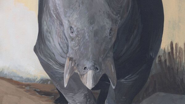 starodávného zvířete, které je příbuzné savcům Lisowicia bojani - Sputnik Česká republika