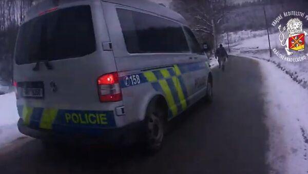 Čeští policisté dopadli cizince utíkajícího z Německa - Sputnik Česká republika