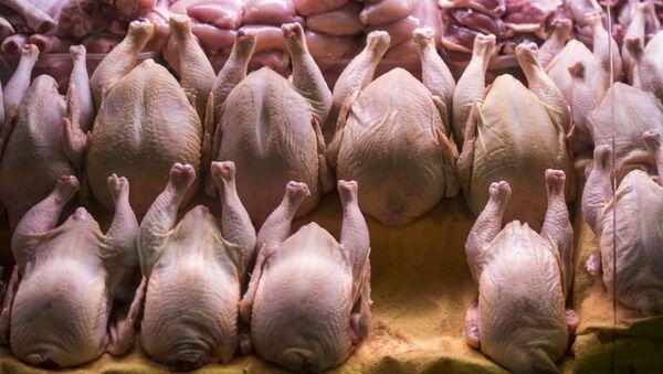 Kuřecí maso. Ilustrační foto - Sputnik Česká republika