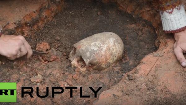 Byla v Čeljabinsku nalezena lebka mimozemšťana? - Sputnik Česká republika