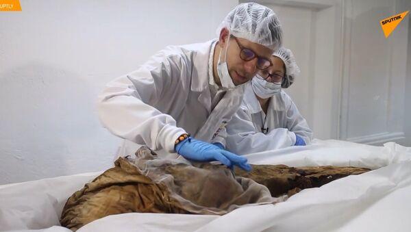 Šokující záběry! V Ekvádoru nalezli záhadnou mumii - Sputnik Česká republika