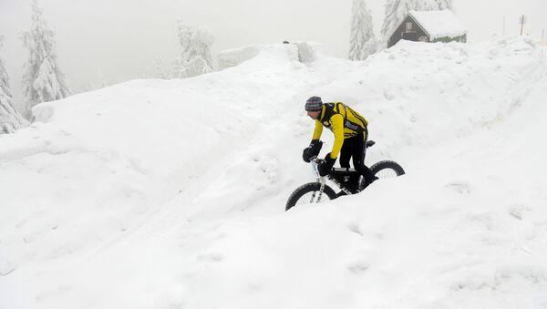 Cyklista sjíždí Orlické hory, dne 25. ledna 2019 (ilustrační foto) - Sputnik Česká republika