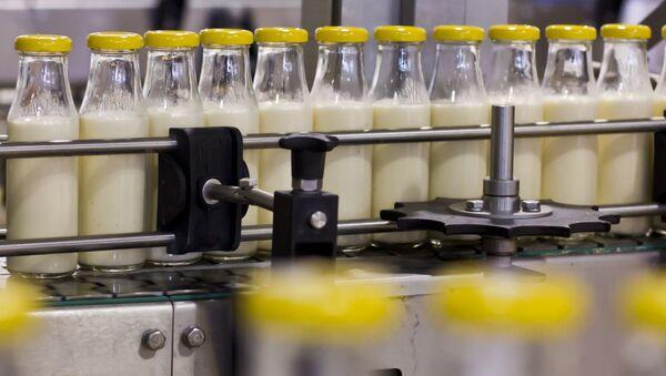 Produkce mléka - Sputnik Česká republika