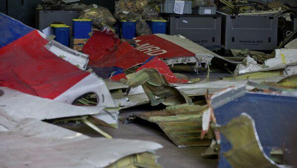 Fragmenty Boeingu 777 po katastrofě letu MH17 - Sputnik Česká republika