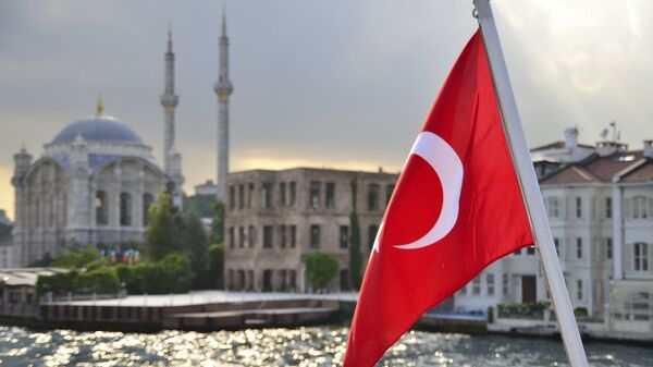 Turecká vlajka na pozadí Istanbulu - Sputnik Česká republika