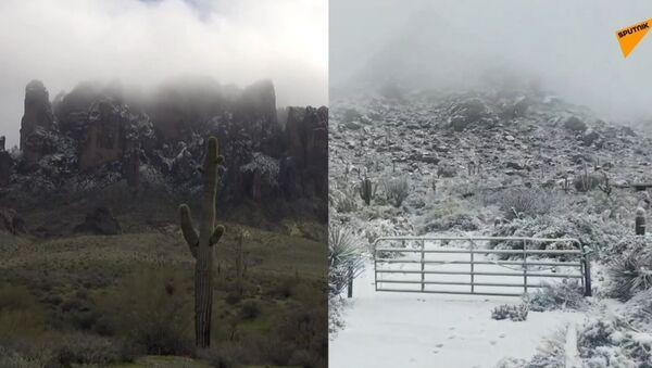Pouště Arizony pokryty sněhem. To musíte vidět! - Sputnik Česká republika