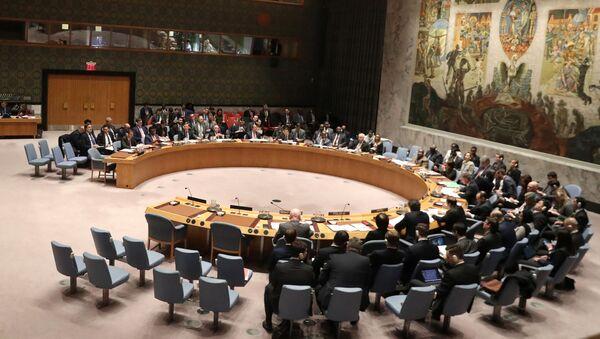 Zasedání Rady bezpečnosti OSN o Venezuele - Sputnik Česká republika