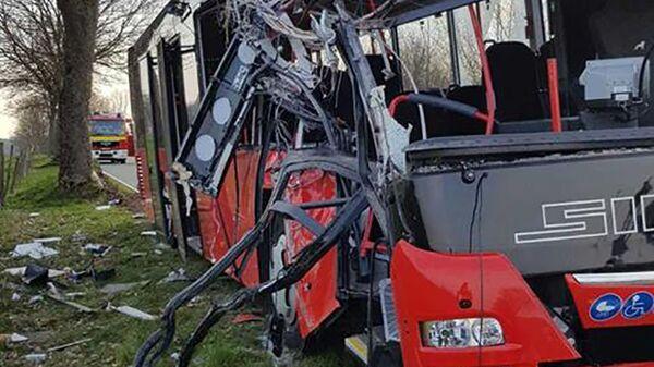 V Německu autobus narazil do stromu - Sputnik Česká republika