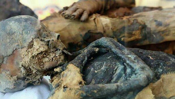 Mumie objevené v hrobce z dob Ptolemaiovců v egyptském guvernorátu Suhag - Sputnik Česká republika