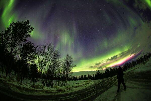 Polární záře v blízkosti řeky Ury v Murmanské oblasti - Sputnik Česká republika
