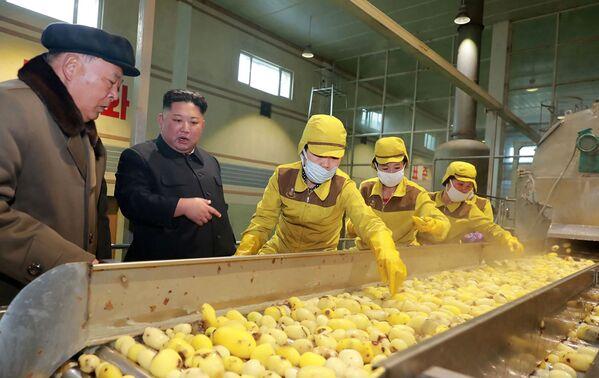 Severokorejský vůdce Kim Čong-un v továrně na brambory v Samjinu - Sputnik Česká republika