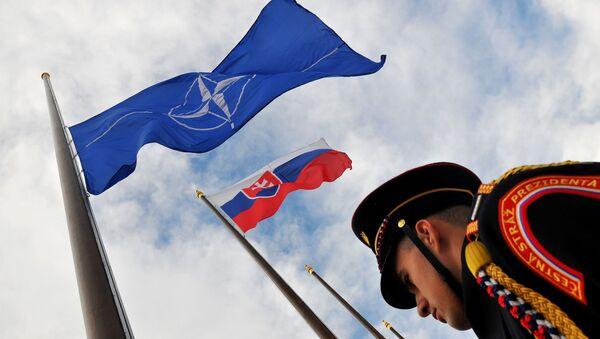 Vlajky Slovenska a NATO - Sputnik Česká republika